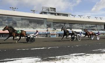 Live racing will resume at Woodbine Mohawk Park starting Friday, June 5.