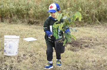 Tens of thousands of trees are set to be planted across the region, thanks to a federal government initiative.